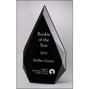A6754 Freestanding Award with Black Silk Screened Back