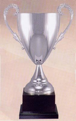 Italian Cups 104