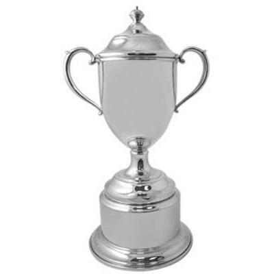 Engraveable silver trophy