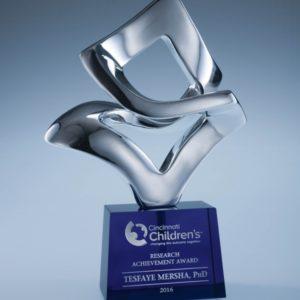 Silver Performer Award