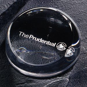 Insignia Paperweight #351