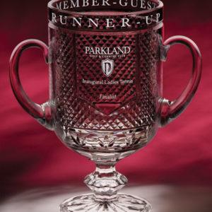 Diamond Cup #9101